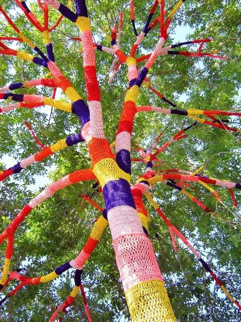 Yarnbombing, which involves people leaving knitted items on objects such as trees, lampposts and buses - Jan 2009