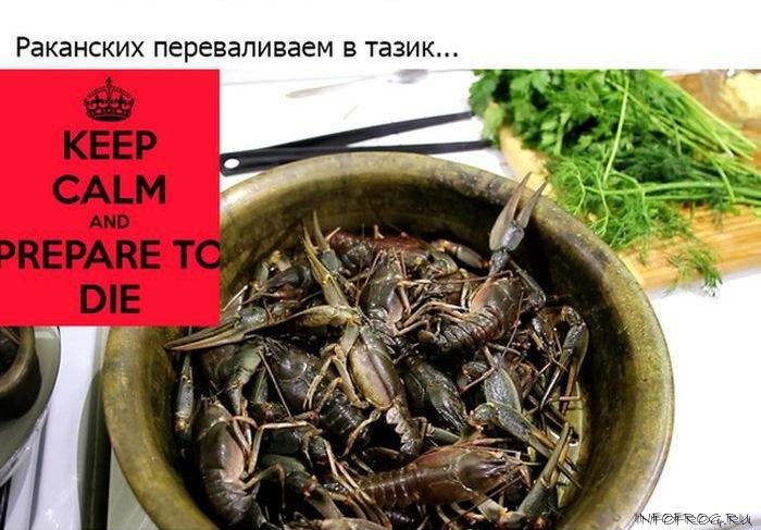 kak_pravilno_varit_rakov5