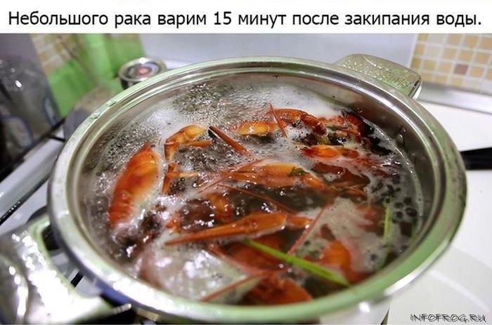 kak_pravilno_varit_rakov7