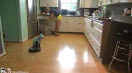 Кошке явно нравится уборка