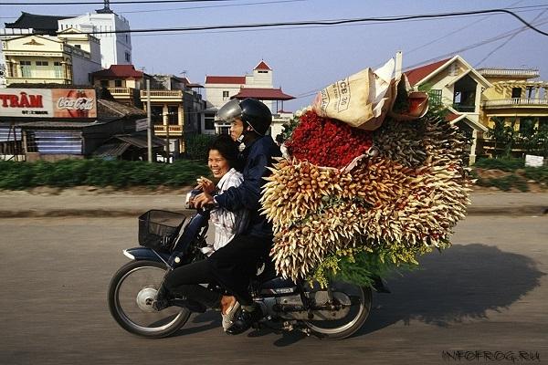 VietnameseMotorbikes10